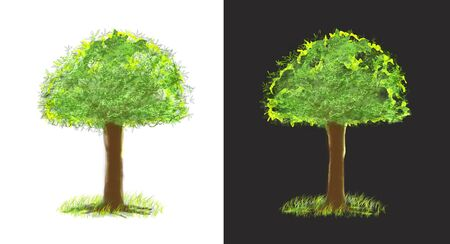 Medium tree paint brush isolate on white and gray background for matching with your image, has clipping paths.