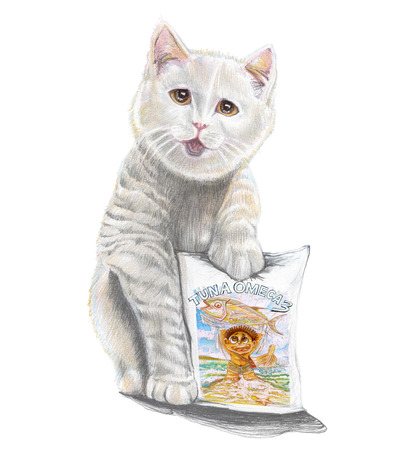 Cat present the tuna omeca 3 product packaging pencil color stroke drawn , Isolate on white background.