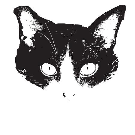 Cat face, head graphic art illustation black and white color. Illustration