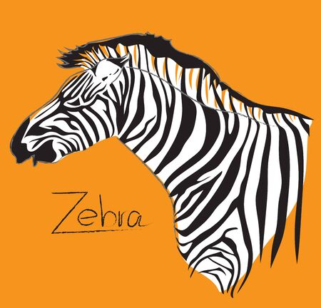 Zebra symbol, logo, sign cartoon art line design side view, has word free hand drawn, on isolate has clipping path.