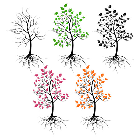 Set of trees on a white background. Trees have foliage of different color. Illustration