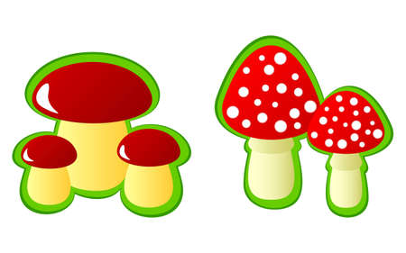 food poison: Isolated mushrooms on a white background. On a picture edible mushrooms and fly agarics are represented.