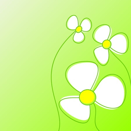Abstract white flowers on a light green background. Vector
