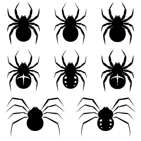 cobwebby: Set black spiders on white background.
