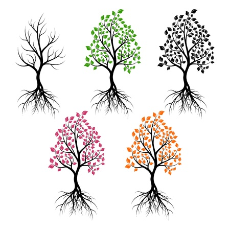 tree root: Set of trees with leaves of different color. Black silhouettes on a white background.