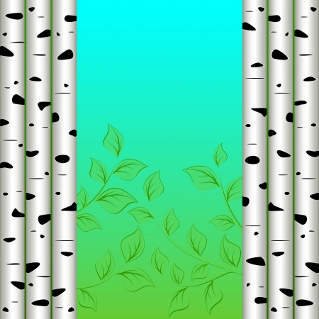 birch bark: Abstract background  Birch trees on the sides  In the center of a branch with leaves against the sky  Illustration