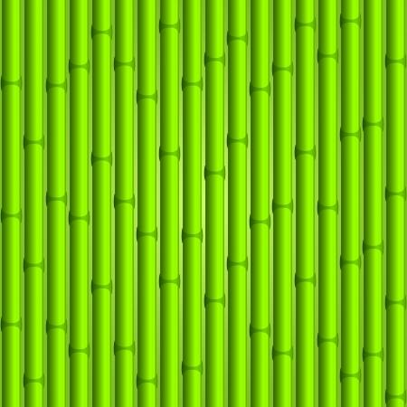 stockade: Bamboo background  Green seamless composition