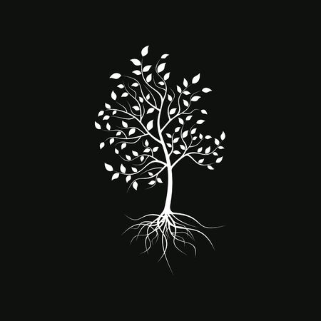 Silhouette of a lonely tree on a black background. Tree silhouette with foliage and roots.
