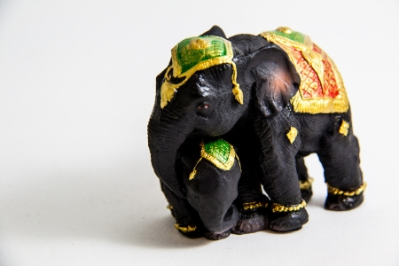 Black Elephant with baby elephant Thailand on white background Stock Photo