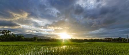 sunset in rainy season. Stock Photo - 15710713