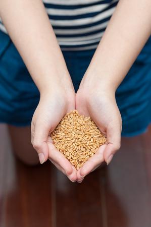 seeds in hands photo