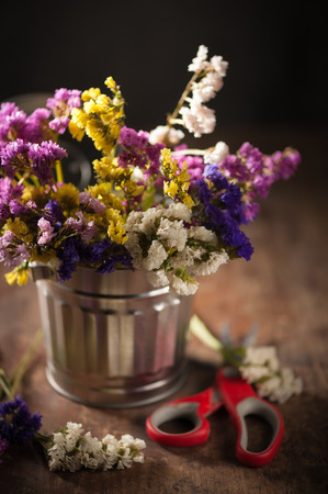 Statice Flower - Limonium with low key scene Stock Photo