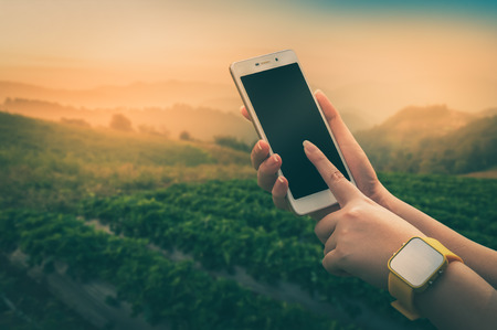Young woman wearing yellow watch touching on smartphone screen with blurry outdoor nature background in morning time with vintage filter effect Stock Photo