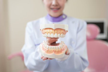 Female dentist explain about brushing teeth in clinic. Health care and maintenance with expert concept Stock Photo
