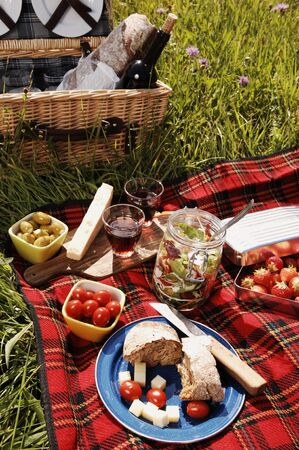 picnic with diffferent sorts of snacks on a blanket photo