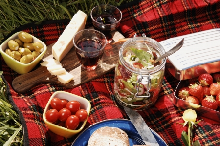 picnic with diffferent sorts of snacks on a blanket