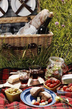 picknick met diffferent allerlei snacks op een deken