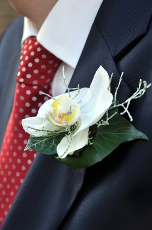 buttonhole: Bride Grooms Flowers for The Buttonhole Stock Photo