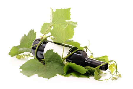 Bottiglia di vino rosso avvolto in giovane germoglio di vite