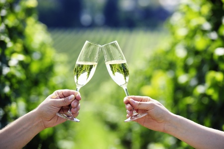 Toasting with two glasses of Champagne in the vineyard Stock Photo