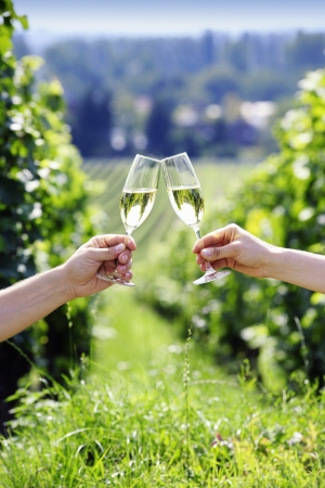 Toasting with two glasses of champagne in the vineyard