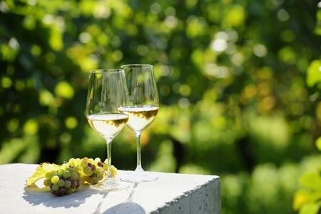 Twee glazen witte wijn (Risling) in de wijngaard