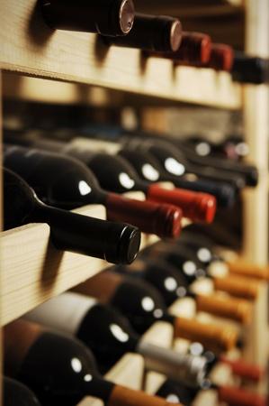 Botellas de vino almacenados en un estante, muy someras shallof Foto de archivo - 20961067