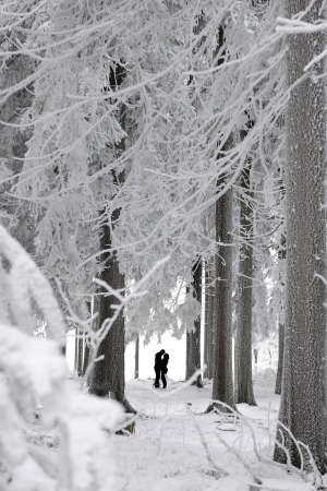 Silhouettes of a kissing couple in a winter landscape Standard-Bild