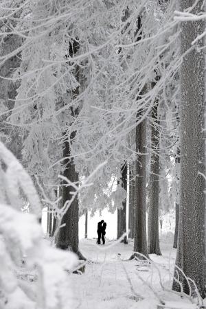 Silhouetten van een kussen paar in een winterlandschap