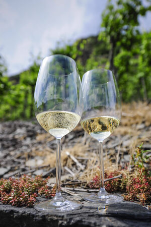 Two glasses of white wine, Vineyards at the Mosel, Germany photo