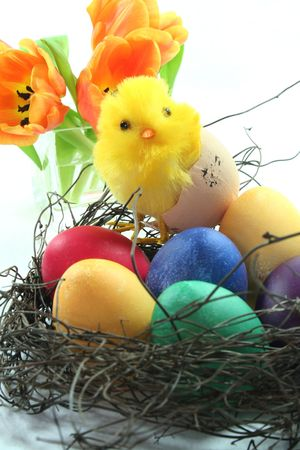 Easter chicks with nest and eggs Stock Photo - 6470468