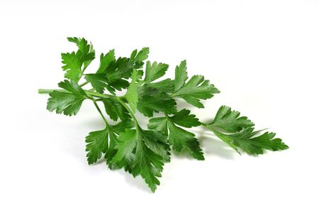 aphrodisiac: Lovage on a white background