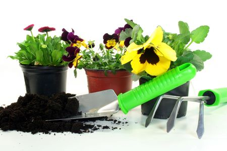 implements: various implements for gardening