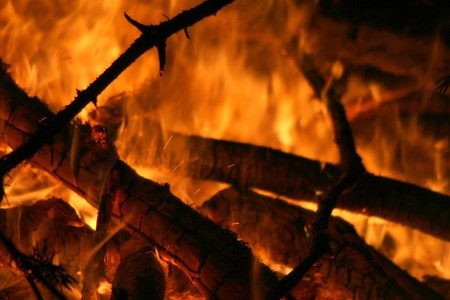 flickering: Fire with flickering flames of wood logs