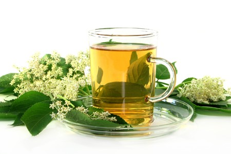 naturopathy: a cup of Elderflower tea with fresh flowers