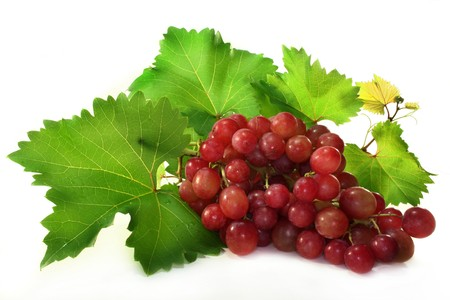 grapes on vine: Grapes and vine leaves on a white background