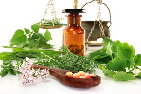homeopathy: las hierbas medicinales frescas y especias sobre un fondo blanco