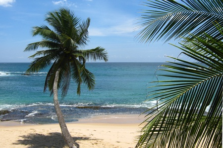 tangalle: wonderfully secluded beach in Tangalle