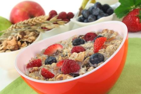 oatmeal: un taz�n de cereales con leche, fruta y bayas frescas Foto de archivo