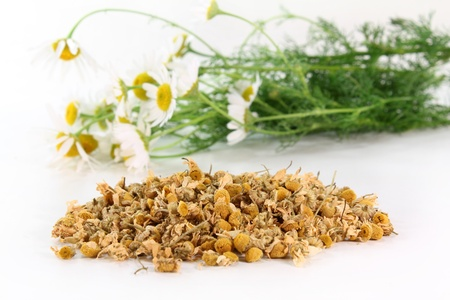 catarrh: a handful of dried chamomile flowers against a white background Stock Photo