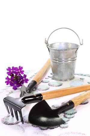 horticultural: Gardening sketch with a horticultural garden tools Stock Photo