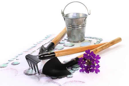 horticultural: Gardening sketch with a horticultural garden tools