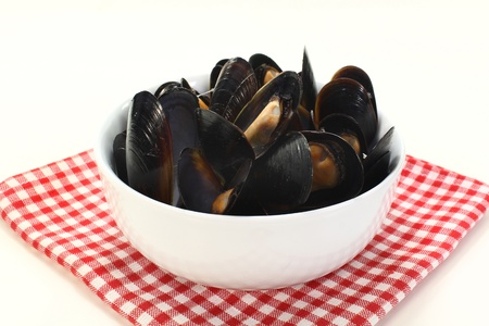 fresh mussels cooked in a white bowl photo