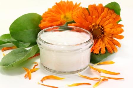 a pot marigold salve with fresh blossoms Standard-Bild