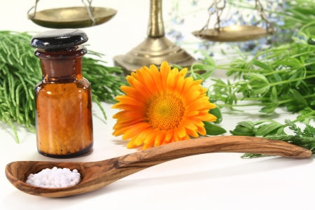 fresh medicinal herbs and globules on a light background
