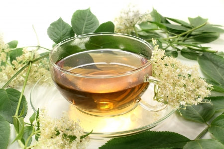 a cup of elderflower tea with fresh flowers Standard-Bild