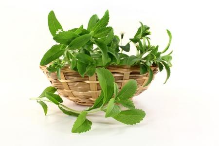 a basket with Stevia on a white background  Standard-Bild