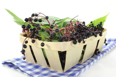fresh elderberries and leaves in a basket photo