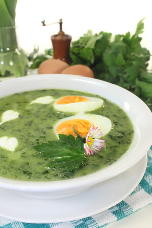 wood sorrel: a green herb soup with eggs and cream Fraich Stock Photo