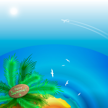 Summer landscape View of the sea horizon and the beach with palm trees. Departure of the aircraft to the island.